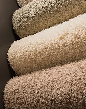 View the carpet range